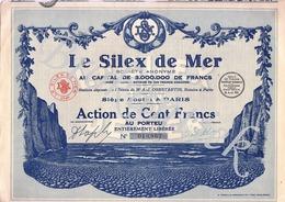 LE SILEX DE MER  S.A. PARIS  Action De 100 Francs  N° 18867  Le 28 Avril 1929 - Actions & Titres