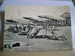 1960 - Pisa - Tirrenia - Spiaggia - Ristorante - Animata - Ed. R. Torelli - Pisa