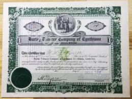 BURLEY Tobacco Company Of CYNTHIANA (KENTUCKY)   Certificate 44 For 14 Shares  To Mr CALDWELL  01 December 1919 - A - C