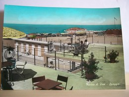 1965 - Pisa - Marina Di Pisa - Spiaggia - Terrazzo Panoramico - Animata - Vera Fotografia - Pisa