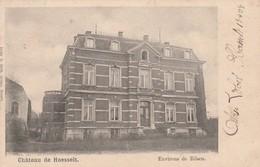 Hoeselt ,le Chateau De  Hoesselt  ,Het Kasteel ,  ( Environ De Bilsen ) - Hoeselt