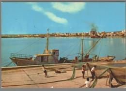 CPM Italie - Manfredonia - Panorama Dal Porto - Manfredonia