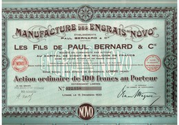 Action Ancienne - Manufacture Des Engrais NOVO - Les Fils De Paul Bernard & Co - Titre De 1930 - - Agriculture