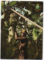 COTE D'IVOIRE - CULTURE DE LA BANANE / THEMATIC STAMPS - Costa D'Avorio
