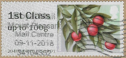 GB 2014 Winter Greenery 1st Type 4 Used Issuing Office 204004 [32/173/ND] - Great Britain