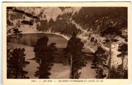 61kr 1502 CPA - LAC NOIR - LES BORDS PITTORESQUE ET L'HOTEL DU LAC - France