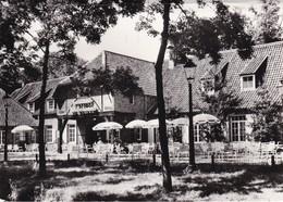 Mol Gasthof De Belaard - Mol