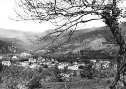 ARLES-sur-TECH - Alzine Rodone - Francia