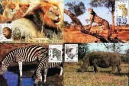 VENDA, 1990, Wildlife (Animals),  Mint Maxicards, Nr(s.) 86-89 - Venda