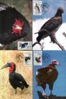 VENDA, 1989, Vulnerable Birds,  Mint Maxicards, Nr(s.) 78-81 - Venda