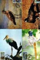 VENDA, 1984, Migratory Birds,  Mint Maxicards, Nr(s.) 10-13 - Venda