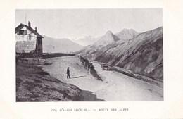COL D'ALLOS  ROUTE DES ALPES (dil187) - France