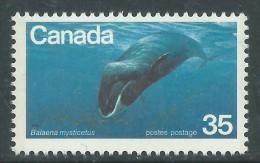 Canada Thème Polaire N° 700 XX Espèces Menacée D'Extinction : Baleine Franche Sans Charnière, TB - 1952-.... Règne D'Elizabeth II
