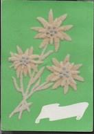 STELLE ALPINE - IN TESSUTO - VIAGGIATA 1964 - Cartoline