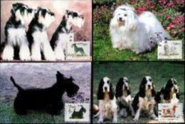 VENDA, 1993, Dogs,  Mint Maxicards, Nr(s.) 110-113 - Venda
