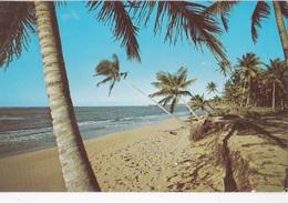 ALONG THE SHORE NEAR SAN JUAN PORTO RICO  VG   AUTENTICA 100% - Puerto Rico