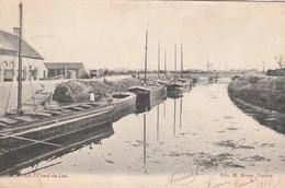 Furnes ,( Veurne ), Canal De  Loo  , ( Péniche ) ( Verso :  Firm. Hallynck , Veurne ) - Veurne