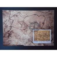 Carte Premier Jour - Grotte De Rouffignac - Oblit 27/5/06 - Cartes-Maximum