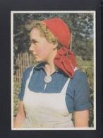 Dt. Reich AK Reichsarbeitsdienst Für Die Weibliche Jugend 1943 Gelaufen - Geschichte