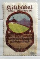 RITZBUHEL   PUBBLICITARIO DEL 1912     ERINNOFILO  Con Angolo Riparato - Francobolli