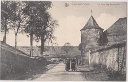Ham-sur-Heure-Nalinnes   Cour-sur-Heure  La Tour Des Revenants - Ham-sur-Heure-Nalinnes