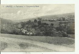 CRUPEY   Panorama - Vue Prise Du Nord. - Assesse