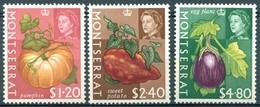 Montserrat - 1965 - Yt 173/175 - Série Courante - * Charnière - Montserrat
