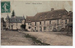 Calvinet : Champ De Foire (carte Colorisée) - Autres Communes