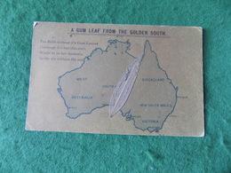 VINTAGE AUSTRALIA: Gum Leaf From The Golden South MAP - Australie