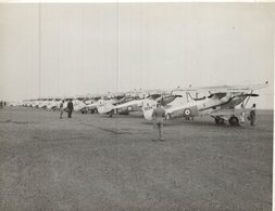 HAWKER AUDAX  1938   20  * 16 CM Aviation, AIRPLAIN, AVION AIRCRAFT - Aviation