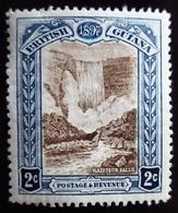 1898 British Guiana Mi 99 . Old Mans Falls.  Queen Victoria . Neuf Trace Charnière - Guyane Britannique (...-1966)