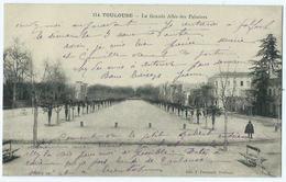 Toulouse La Grande Allée Des Palmiers - Toulouse