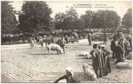 """LA NORMANDIE - """"La C.P.A."""" - LA VIE NORMANDE - Au Champ De Foire - N° 61 - Basse-Normandie"""