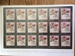 Nord Corea / North Korea 1979, Albrecht Dürer Rose Roos Rosa Flower, Complete Sheet (o), Used - Korea (Noord)