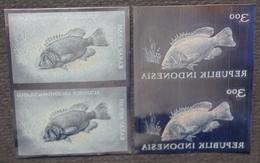 KPI-393- Indonesia 1963 Fish. LUTJANUS ARGENTIMACULATUS, 3r (kakap Merah), Pair 2. Piece Of Printing Plate! Rare!!! - Indonesia