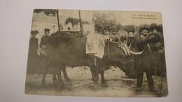 CPA CARTE POSTALE ANCIENNE FRANCE 46 LOT 22 FOIRE DE GRAMAT ANIMAUX VENTE D UNE PAIRE DE BOEUFS 1910 - Gramat