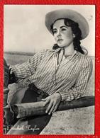 """ELIZABETH TAYLOR NEL FILM """"IL GIGANTE"""" - Artisti"""