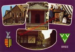 Oud Stadhuis - St Michielskerk - Wandelgebied Jan Van Abroeck - Bree - Bree