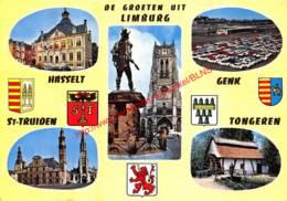 Stadhuis - Sint-Truiden - Sint-Truiden