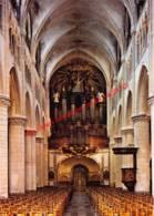 Basiliek - Tongeren - Tongeren