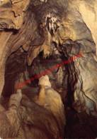 Grottes De Neptune - Petigny - Couvin