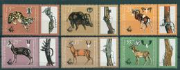3049 Bulgaria 1981 Hunting Exibition Plovdiv Animals **MNH /expo 81 , Internationale Jagdausstellung Bulgarie Bulgarien - Bulgaria