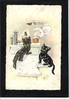 CPA BOURET Chat Cat Position Humaine Circulé - Cats