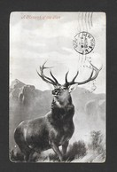 ANIMAUX - ANIMALS -  A MONARCH OF THE GLEN - CHEVREUIL - DEER - POSTMARKED 1905 NICE STAMP- FROM VALENTINE'S SERIES - Animaux & Faune
