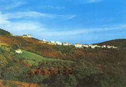 CPM.Col D'Ibardin.Vera De Bidassoa.ed:Tellechea - Guipúzcoa (San Sebastián)