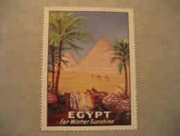 Egypt The Citadel Of Health Camel Archaeology Sante Medicine Poster Stamp Label Vignette Viñeta Africa - Égypte