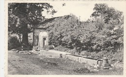 Transinne ,( Lesse ,Redu) ,  Une Vieille Fontaine - Libin