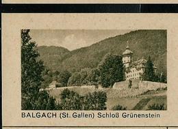 Carte Illustré Neuve N° 182 - 040 D - BALGACH (St. Gallen) Schloss Grünenstein  (Zumstein 2009) - Entiers Postaux