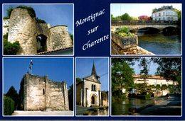 16 MONTIGNAC-SUR-CHARENTE  MULTI-VUES - France