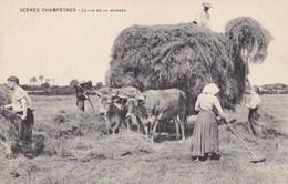 SCENES CHAMPETRES - La Fin De La Journée - Agriculture